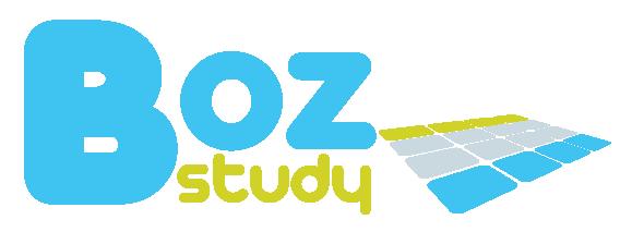 logo boz study